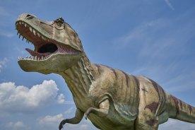 dinosaur-3414160__340